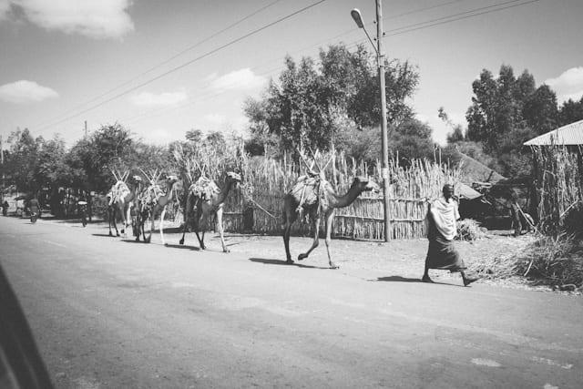 Rock hewn churches of Lalibela, Ethiopia - travel photographers South Africa (8)